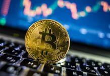 Apostas esportivas com Bitcoin